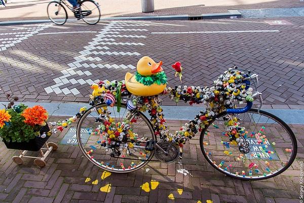 20141012_Amsterdam_028 by Sergey Kokovenko