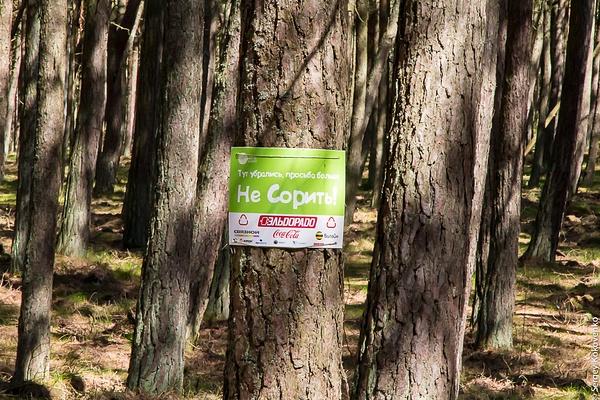 20150503_Kaliningrad_057 by Sergey Kokovenko