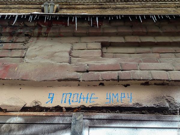 20151011_NiNo_072 by Sergey Kokovenko