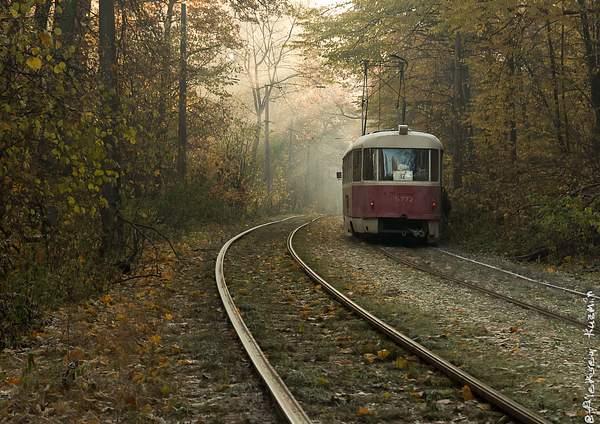 Fabulous tram