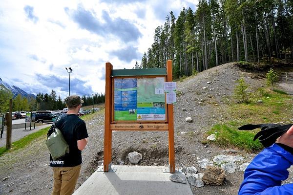 Sulphur Mountain Hike 1 June 2013 by Artjom Smekalin