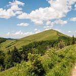 Carpathians Parashka 2012
