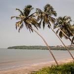 Goa 2011