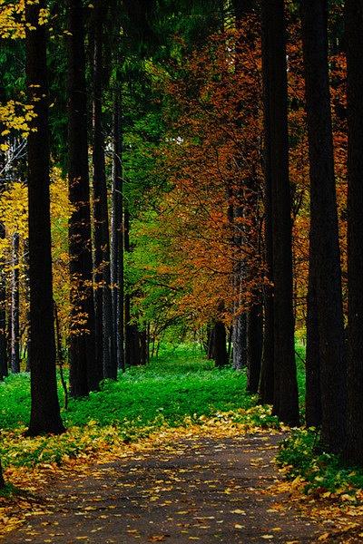 2011-10-09_18-06-38_006_v2 by deniska