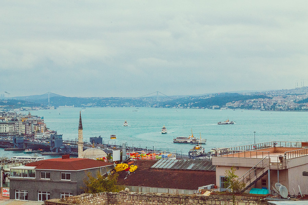 IMG_2619 by dimelord