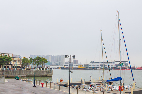 IMG_1053 by dimelord