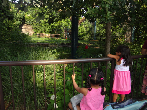 Lincoln Park Zoo by mommy19 by mommy19