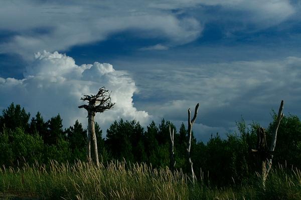 2012-07-20 21:39 by SergeyM by SergeyM