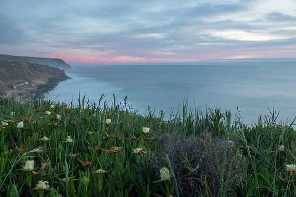 Southern Portugal 2014 by Muzzyenn