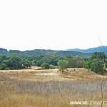 TOAST south cali // grassland