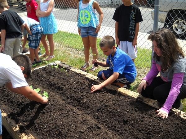 Greenhouse & Garden by Northfield Community School