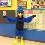 New School Mascot