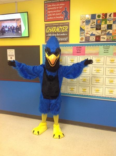 New School Mascot by Northfield Community School