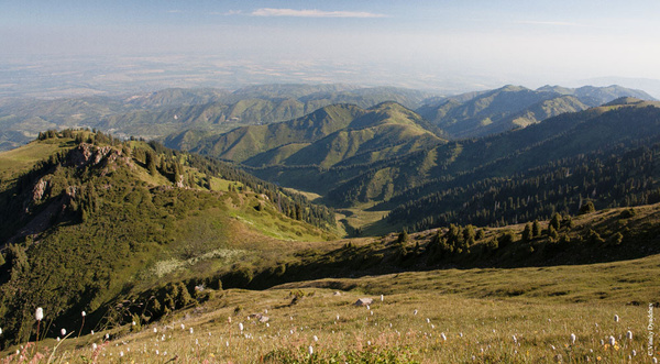 Hills by VitaliyDyadchev