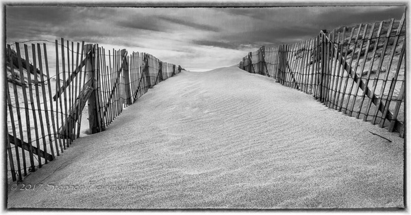 Fenced In by StephenFieldingImages