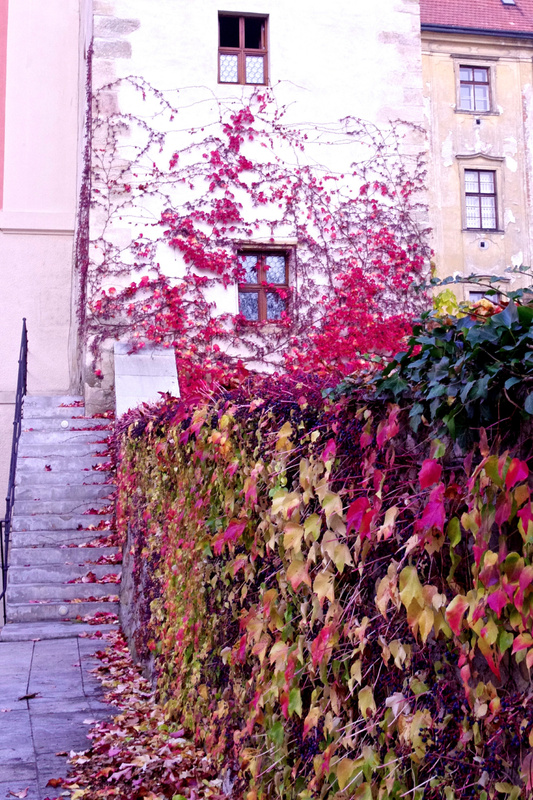 Olomouc 2013