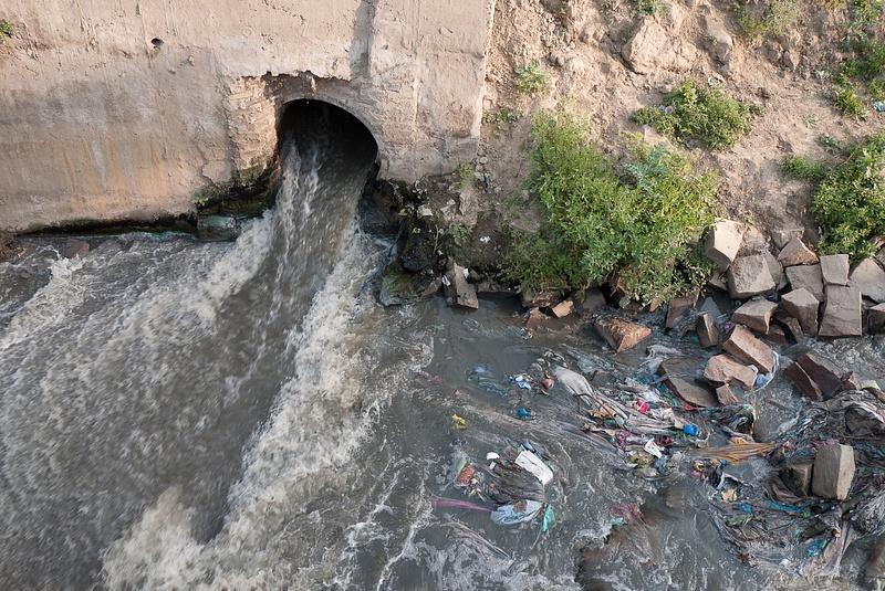 Near_St._Ravidas_Park,_South_of_Assi_Ghat_Varanasi_UP_0001