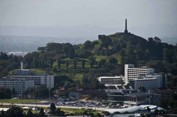 One Tree Hill and Alexandra Park in the distance by...