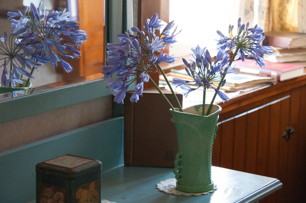 Flowers in the cottage bedroom by Willis Chung
