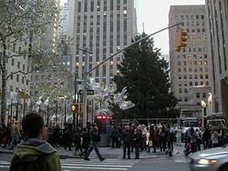 2011 NYC Christmas and random sights