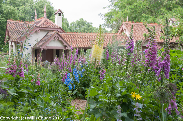 Duck Island cottage, flowers doing their thing. by...
