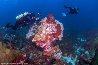 2014Mar Bonaire east coast dive - Boca Onima