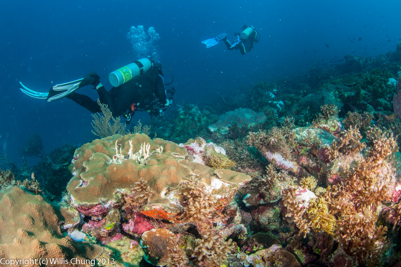 The 10.5mm lens puts divers into every shot, useful for sense of scale