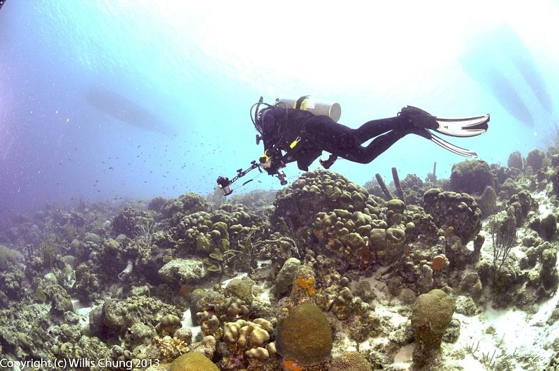 Checking the shallows again