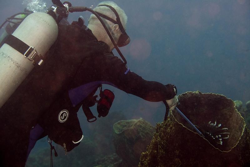 David spearing a lionfish