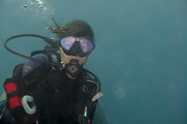 2015Apr Dominica Dive 13: Dangleben's Pinnacles - Coral...