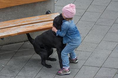 Day 4: An Icelandic Girl and Her Dog, Reykjavik Centerhotel Plaza