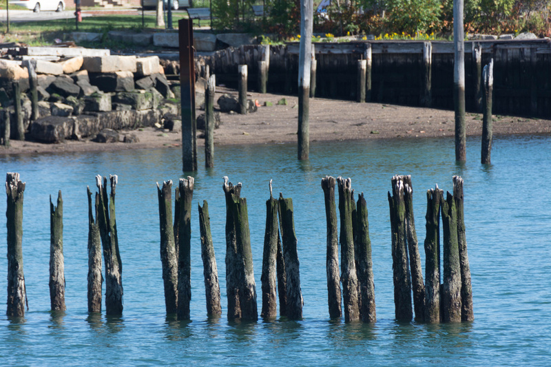 The pilings last longer than the flat parts of the pier