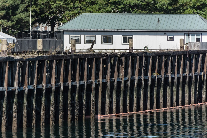 Old piers at the Port of Boston