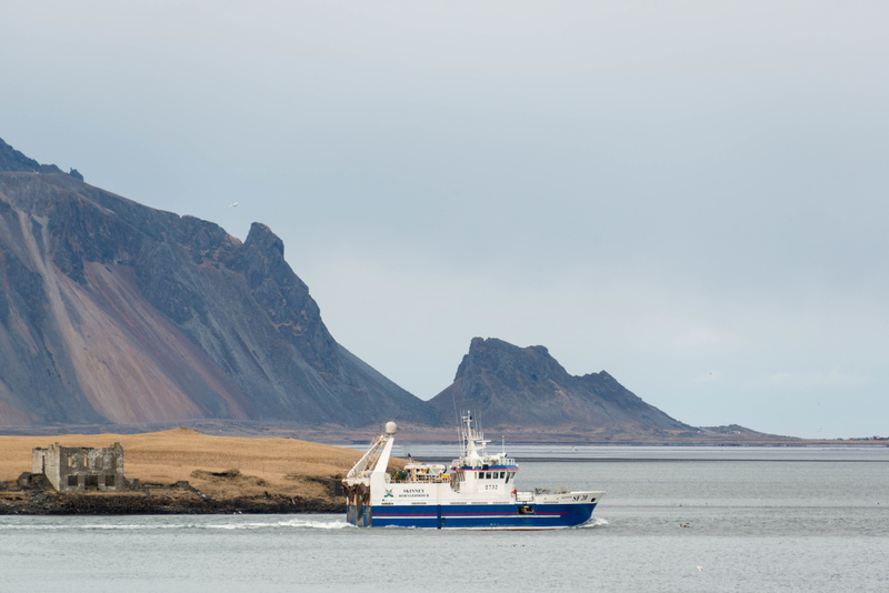 Fishing boat headed out of Höfn harbor