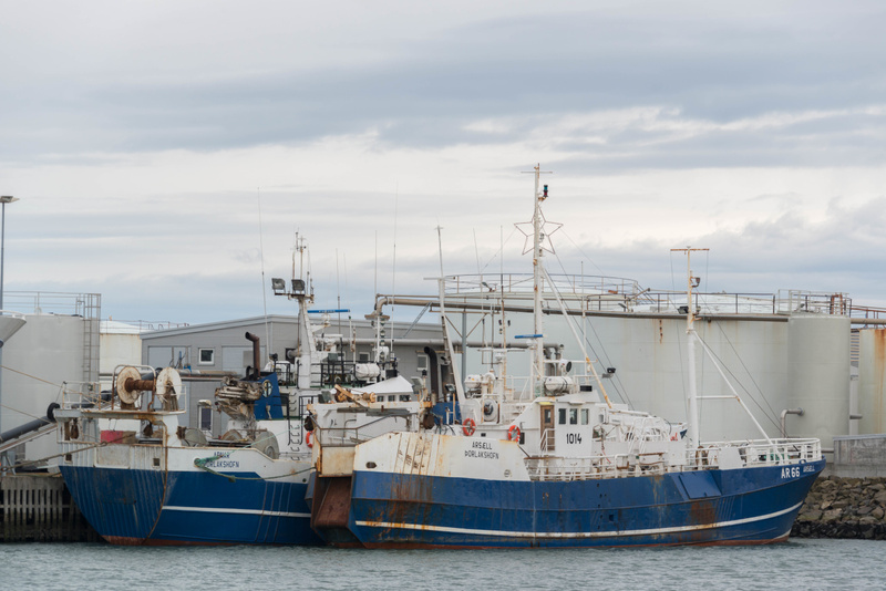 More modest fishing vessels at Höfn
