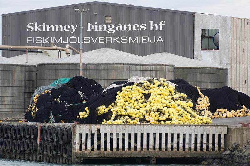 Big fish processing center at the docks