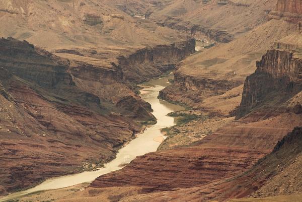 Muddy Colorado River by Willis Chung