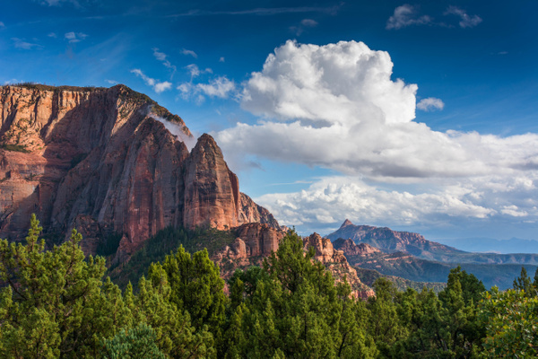 2015Oct Zion NP: Kolob Terrace Rd and Kolob Canyons by Willis Chung