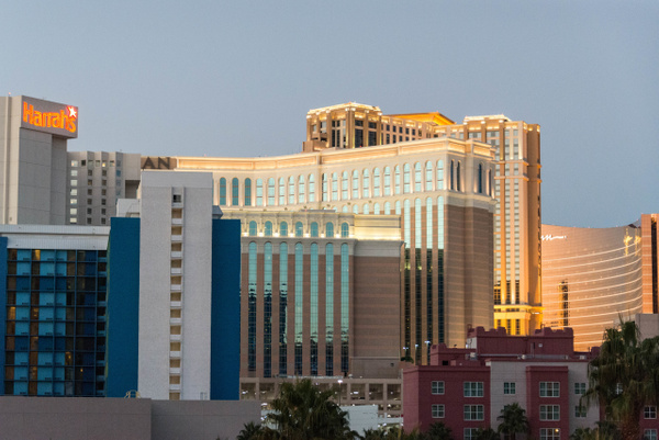 Morning view from our room in the Flamingo by Willis...