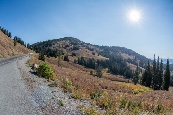 View north to Dunraven Pass by Willis Chung