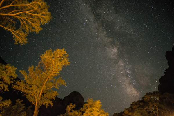 2017Aug Milky Way Zion Lodge by Willis Chung by Willis...