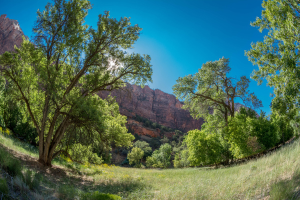 2017Aug Zion Valley Morning Views by Willis Chung by...