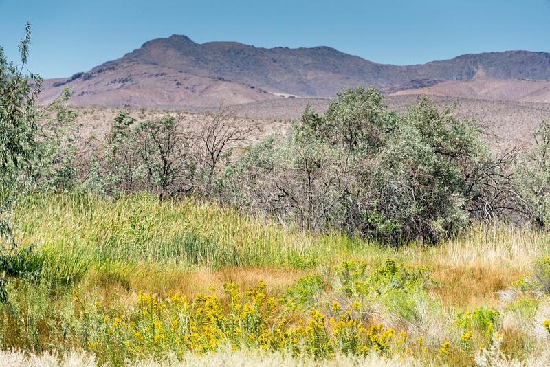 A layered panorama along the road north of Bailey, Nevada, USA