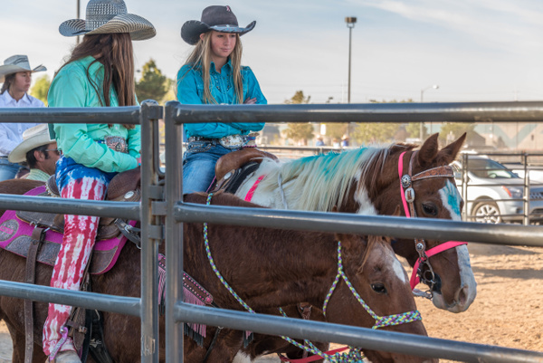Riders in the practice corral. by Willis Chung