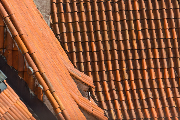 Czech rooflines by Willis Chung
