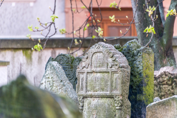 Day 7 AM Old Jewish Cemetery & Klaus Synagogue by...