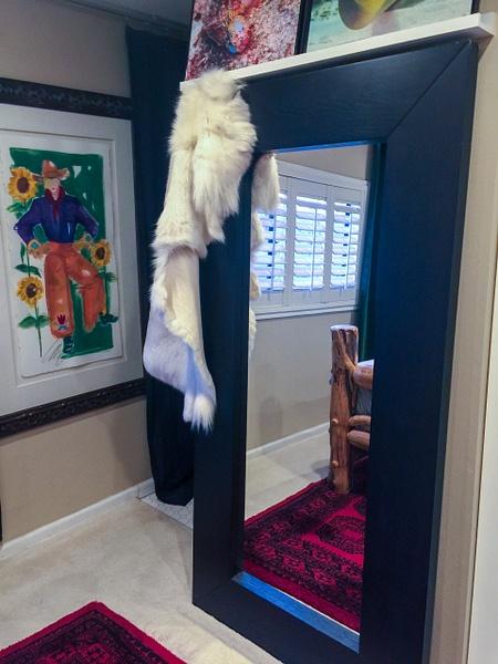 2018Apr Ikea Mirror Barn Door by Willis Chung by Willis...