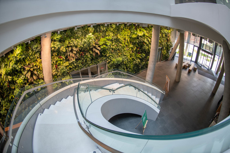 Greenery in the lobby of Main Point Karlín complimenting the spiral staircase.