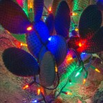 2017Nov Ethyl M Cactus Garden Holiday Lights LV NV