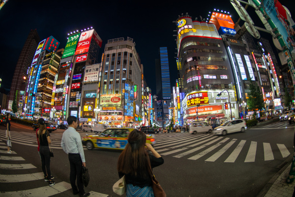 Day 4 Shinjuku Afternoon and Evening Sights by Willis...